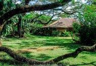 CASA DOYO - ECOVITAL COSTA RICA