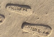 Glitter Bay 109